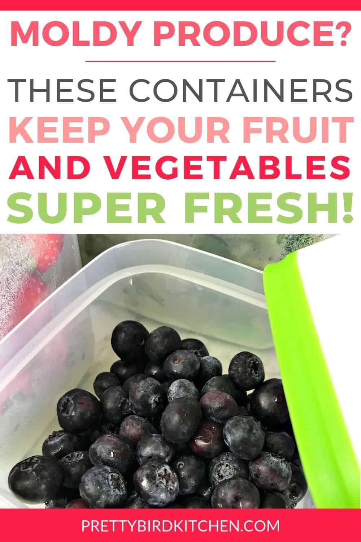 Photo of Ein ehrlicher Rubbermaid FreshWorks Review – Erfahren Sie, wie Sie Obst und Gemüse …