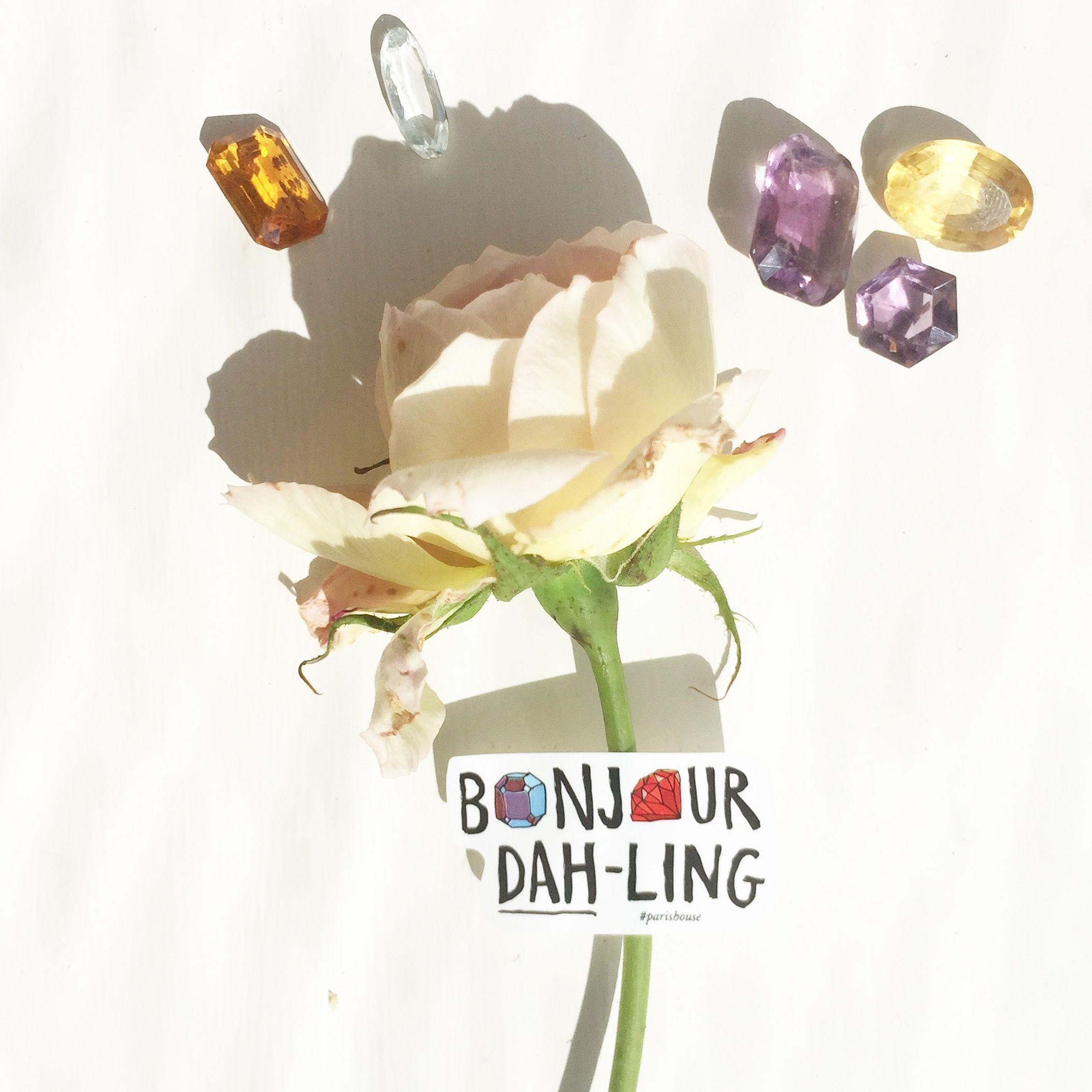 Bonjour Dah-Ling