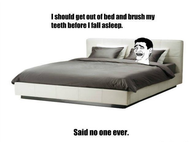 Get Out Of Bed And Brush Teeth No Funny Image Ikea Bed Bed Frame Ikea Queen Bed Frame