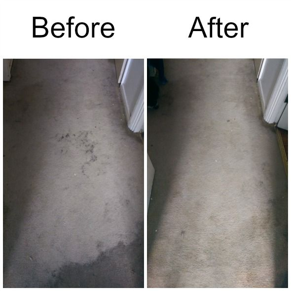 rug doctor review - before and after | rug doctor carpet cleaning