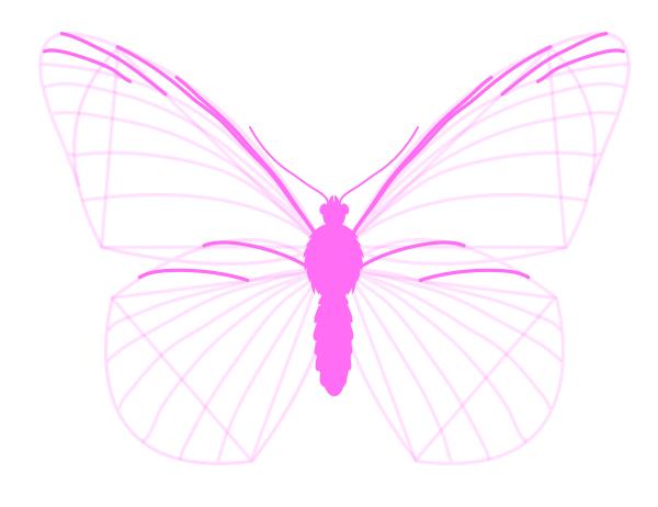 drawingbutterfly_3-5_wing_drawing | butterfly | Pinterest | Wings ...