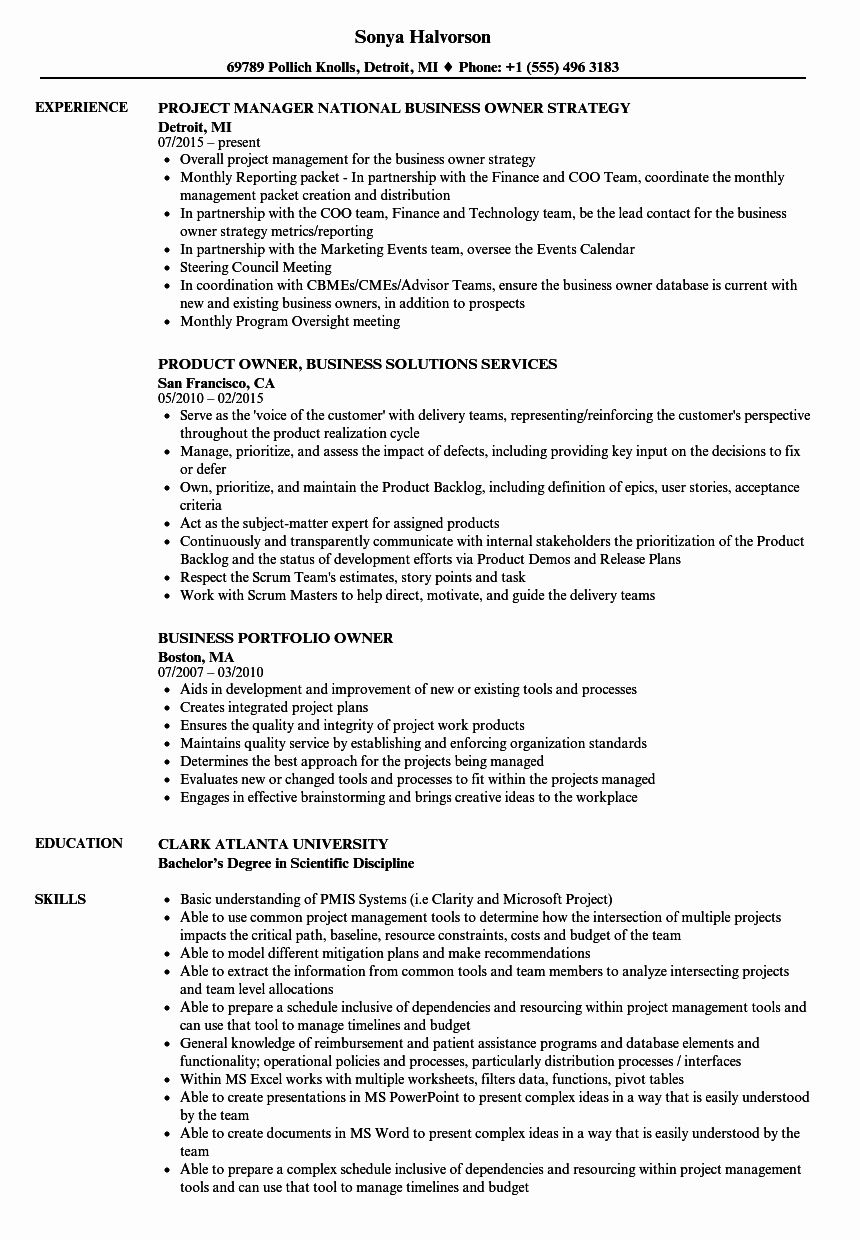 23 Business Owner Resume Examples in 2020 Resume