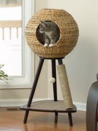Paniers originaux pour chats