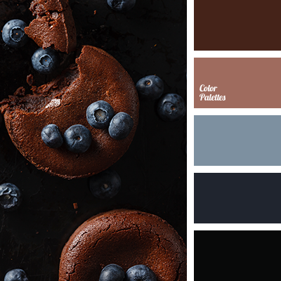 auburn color, black and blue, black and brown, brown and black color, color ochre, color of a cinnamon stick, contrasting combination of warm and cool tones, granite color, red-brown color, shades of blue-grey colour palette for designers, shades of brown color, shades of gray-blue color.