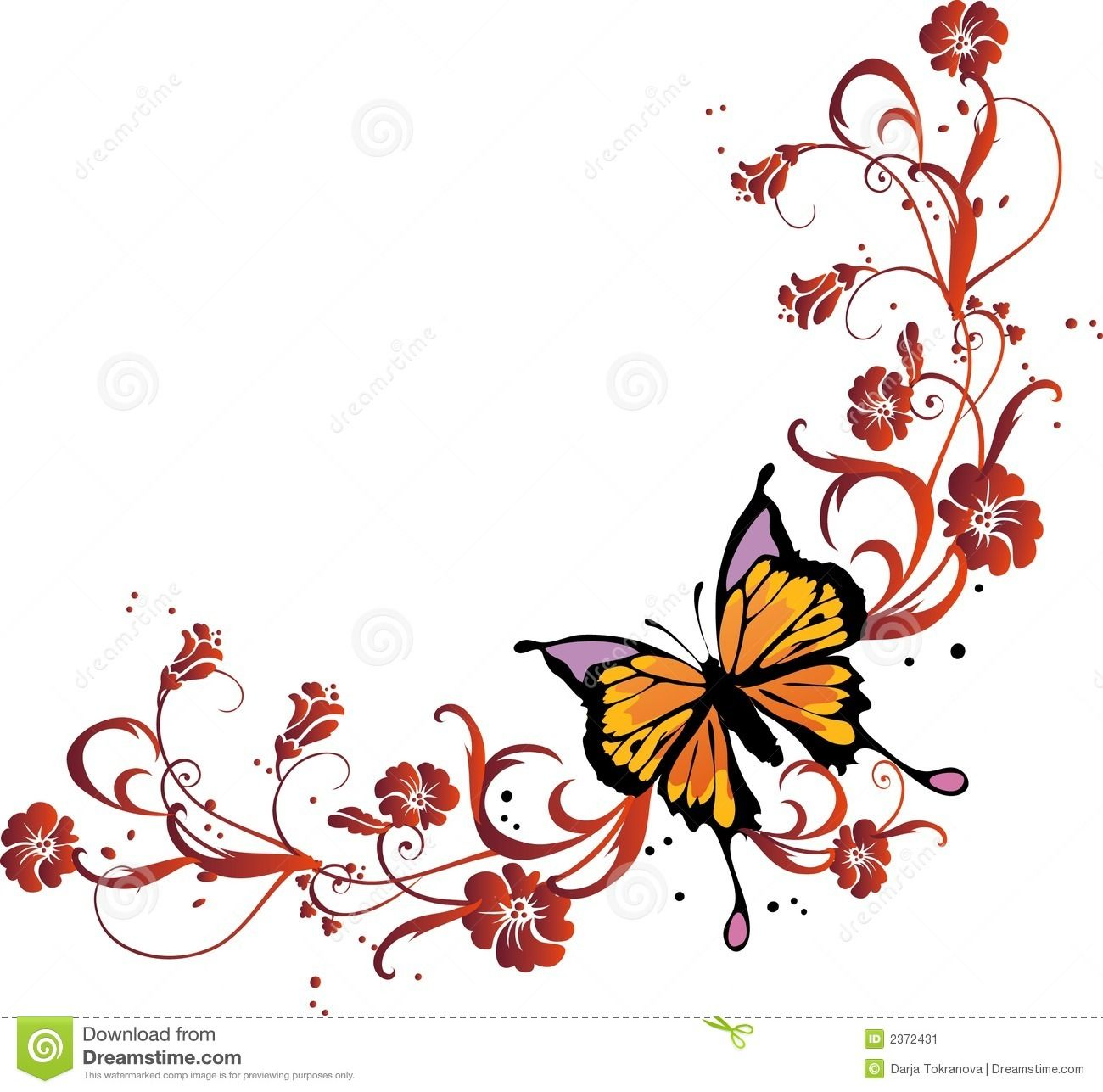 butterfly frame stock image image 2372431