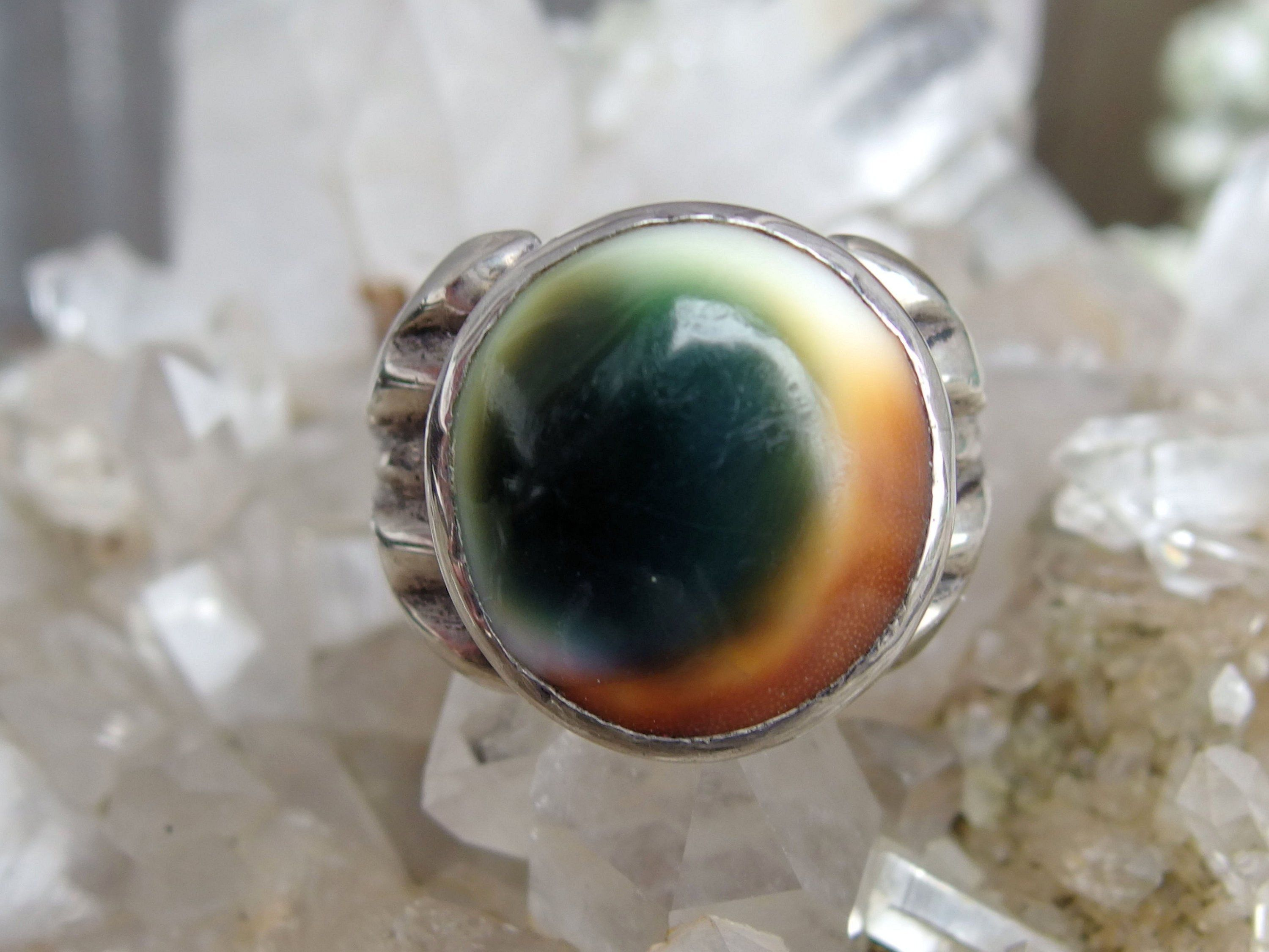 Sterling Silver Operculum Shell Ring Cat's Eye Shell with