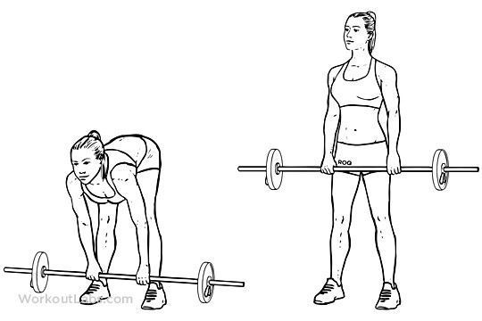 #44lb #deadlift #fitness #langhantel #langhantel fitness #legged #stiff # 44lb #deadlift #langhantel...