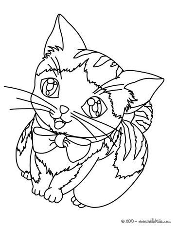 Cat Coloring Pages Kitten Cat Coloring Page Animal Coloring Pages Cat Drawing For Kid