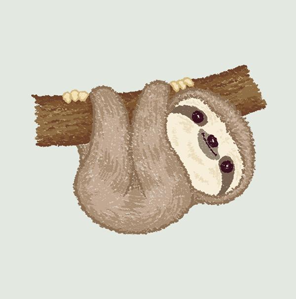 Sloth On Behance Sloth Art Sloth Drawing Cute Baby Sloths