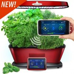 Miracle Gro Aerogarden Bounty Elite Wi Fi Red Stainless Reviews