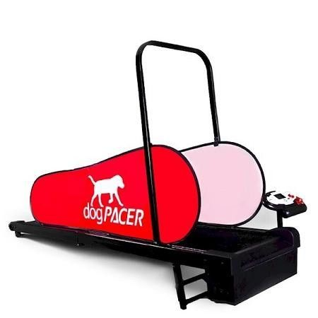 Which you like best? DogPacer Mini Treadmill  Check it out here : http://www.allforourpets.com/products/dogpacer-mini-treadmill