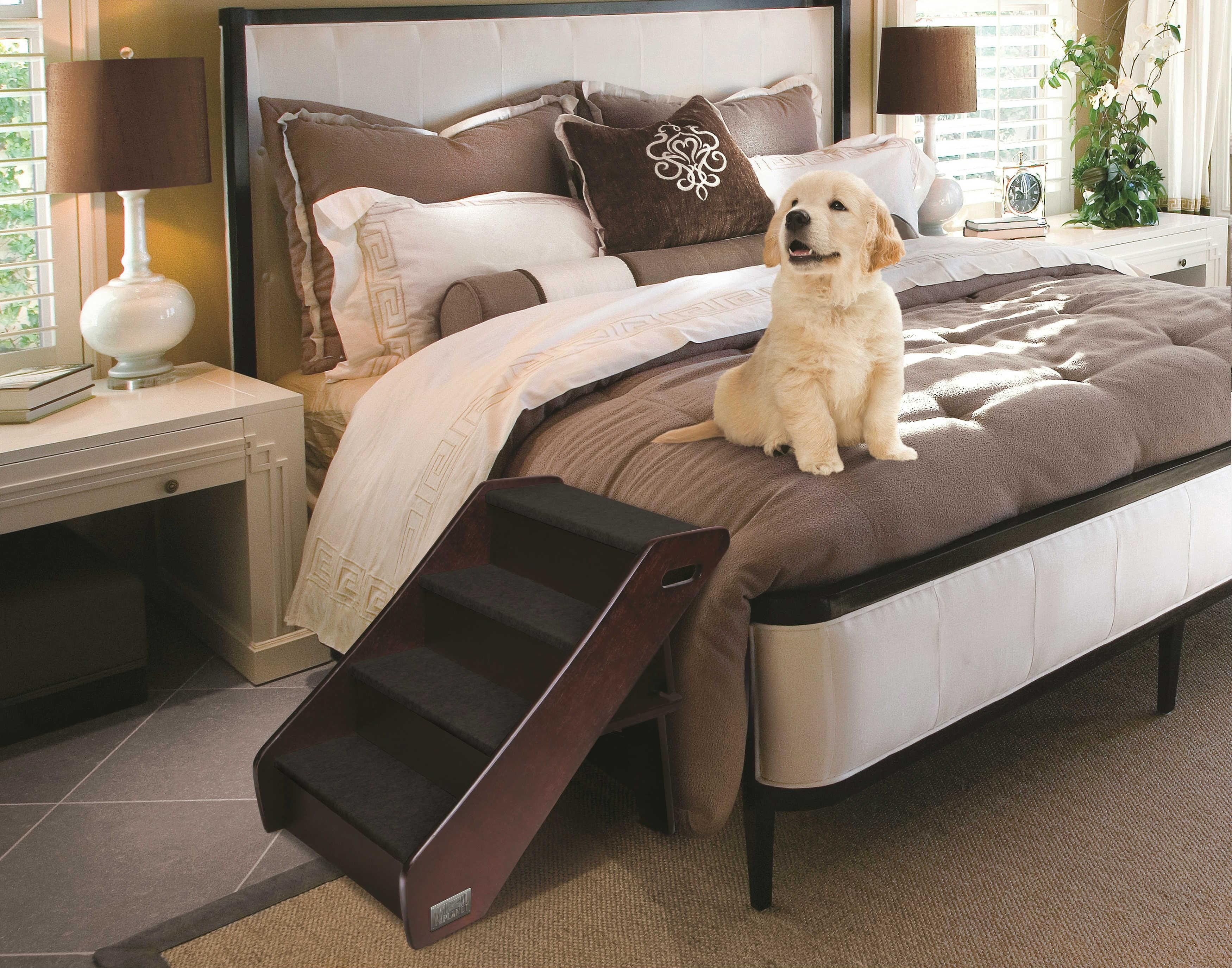 Pin by L Nobs on home ideas (With images) Dog bed large