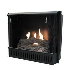 Paramount GF-INSERT Gel Fuel Fireplace Metal fire box Real heat ...