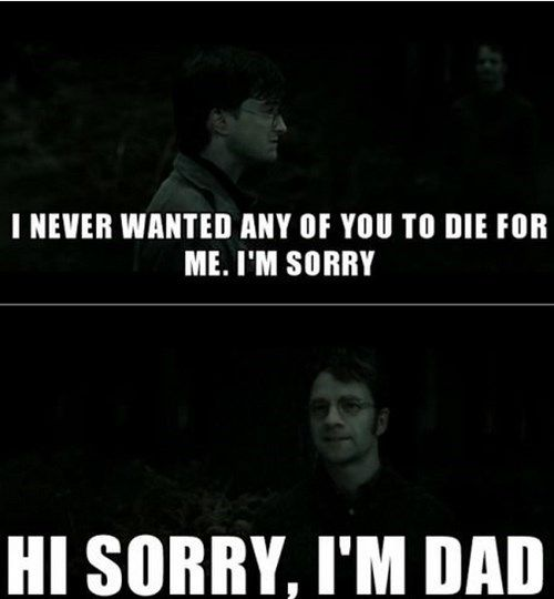 James Potter Is As Bad As Rick Grimes Harry Potter Funny Harry Potter Universal Harry Potter Memes Hilarious