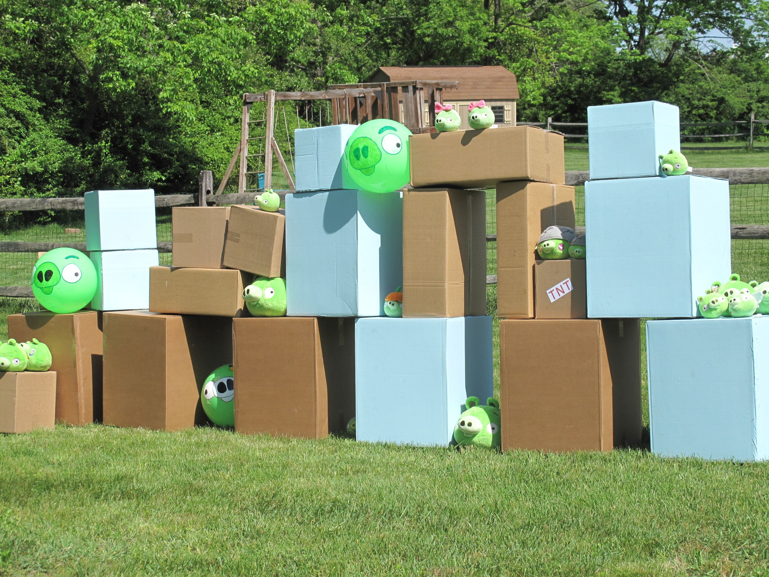 Life size angry birds game that i made for my sons 4th birthday life size angry birds game that i made for my sons 4th birthday party solutioingenieria Images