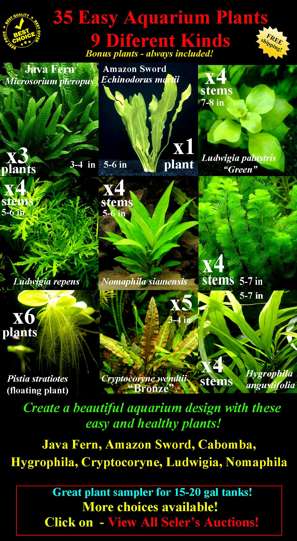 best live plants for tropical aquarium
