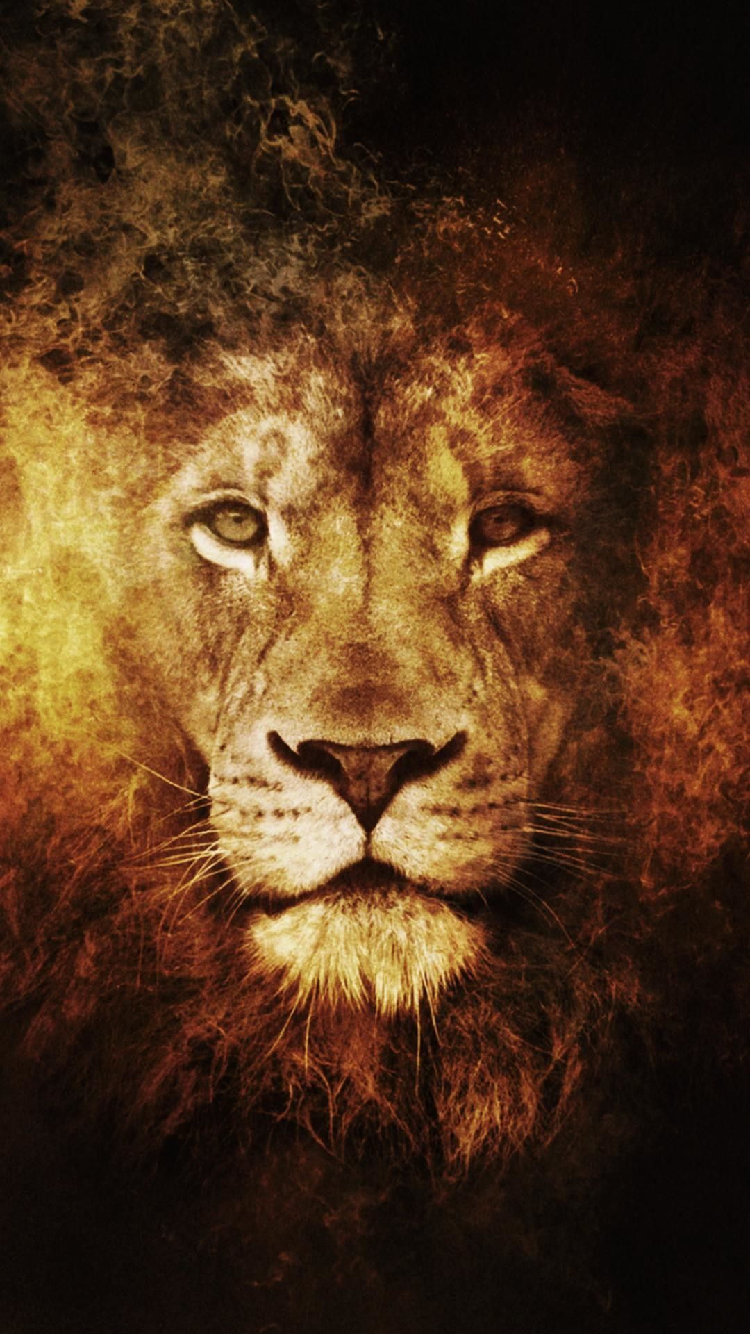Angry Lion Wallpaper Download In 2020 Lion Artwork Lion Hd Wallpaper Lion Pictures