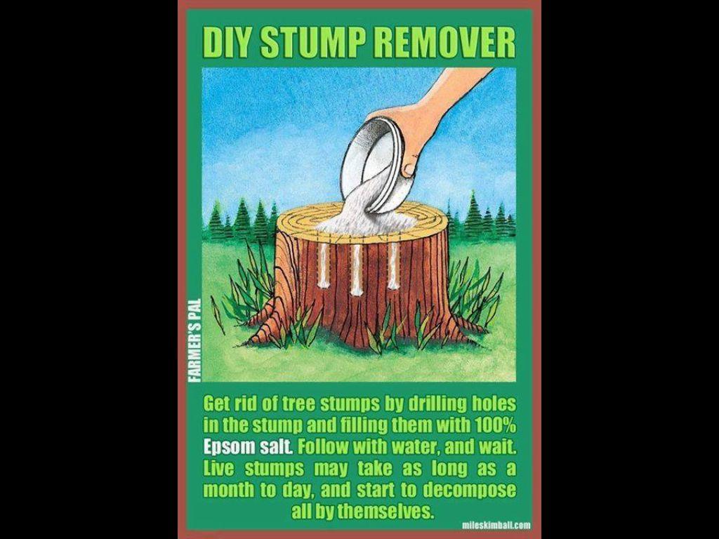 stump remover outdoors stuff pinterest. Black Bedroom Furniture Sets. Home Design Ideas