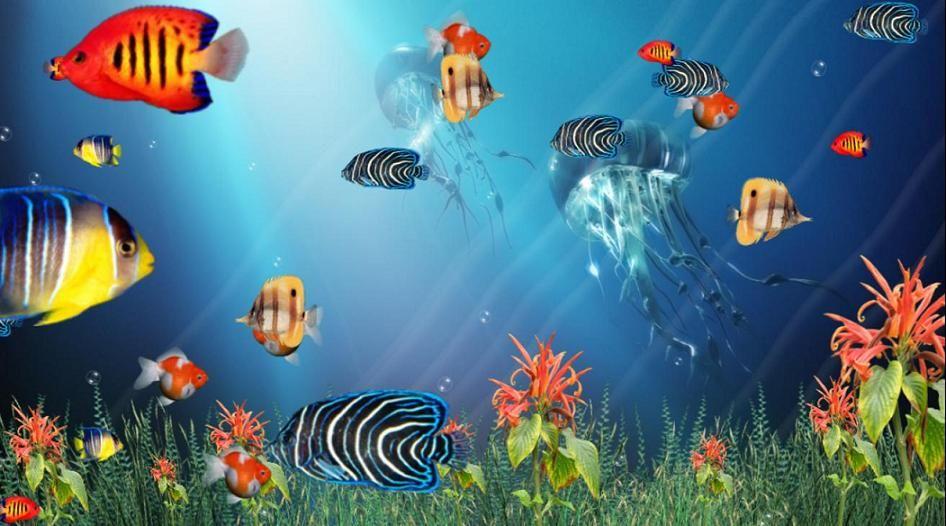 Pin By Azreeyl Isreal On 1 Fish 2 Fish Red Fish Blue Fish Ocean Aquarium Tropical Fish Tropical Freshwater Fish