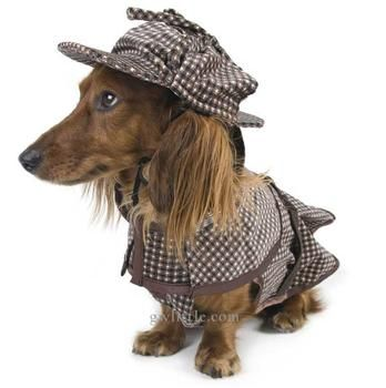 Some People Even Dress Their Dogs Up Like Sherlock Holmes With