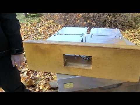 Innovative Solution for Varroa Mite: Sauna for the Bees