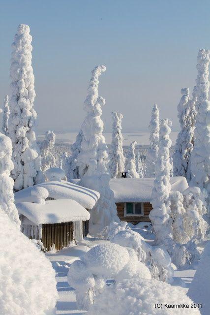 Incredible picture of the winter landscape in Riisitunturi by Kaarnikka. Cabins and Activities in Saariselkä http://www.saariselka.com