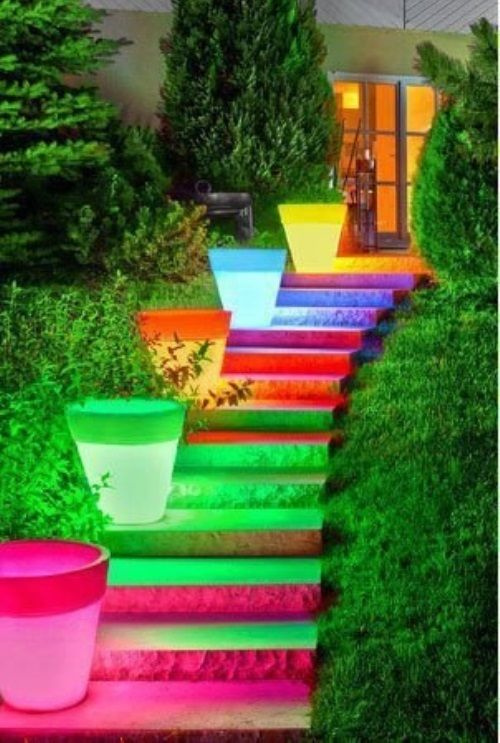 Add Some Colour To Your Garden