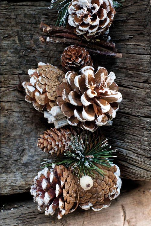 A cute way to use pine cones for winter decorating Homemade christmas decorations using pine cones