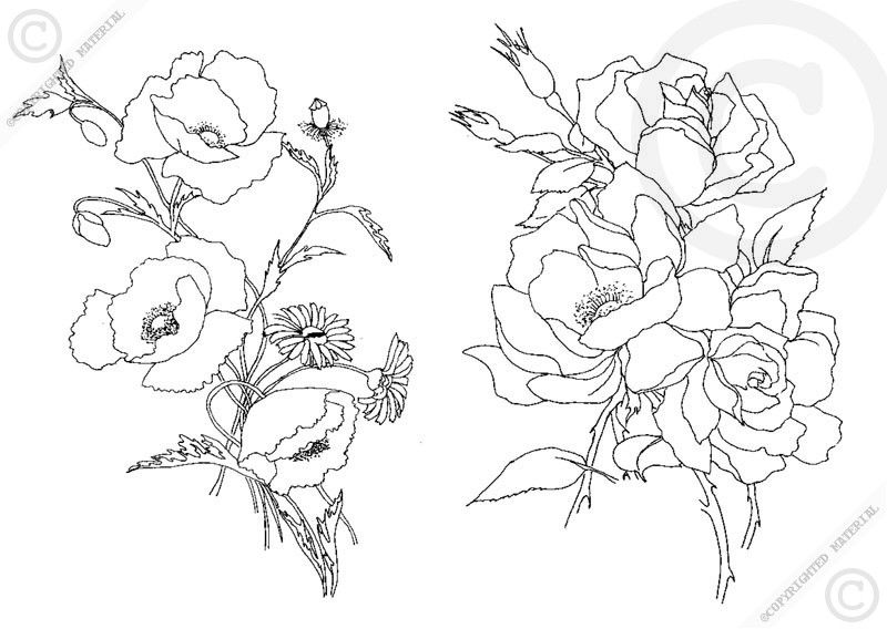 Number Names Worksheets pictures of flowers to trace : 1000+ images about Flowers on Pinterest