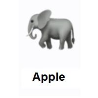Elephant Emoji In 2020 Emoji Elephant Emoji Design