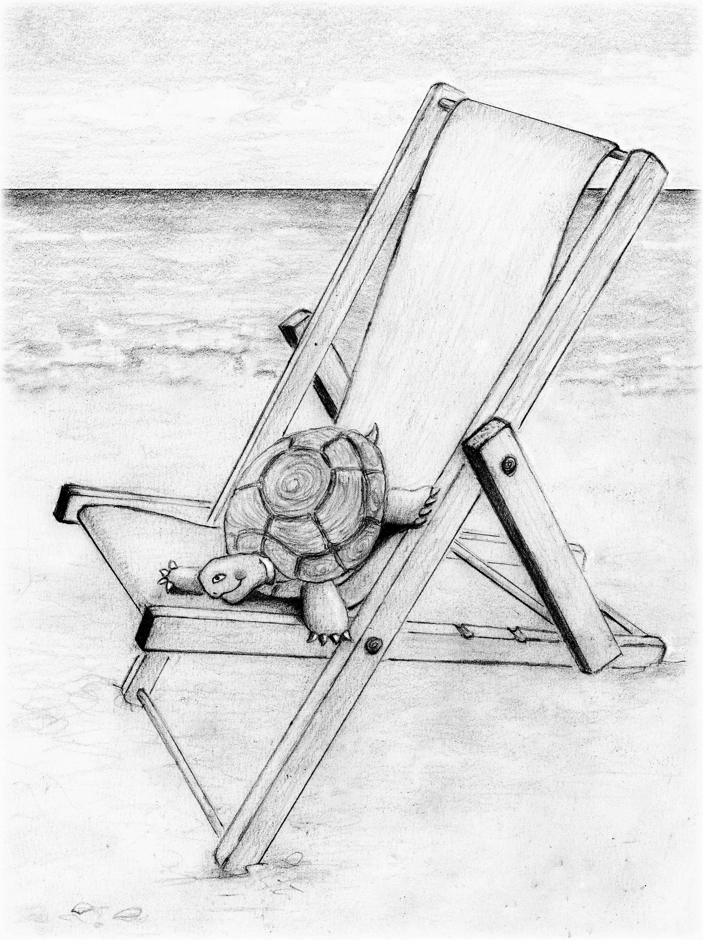 Schildpad Boris In Zijn Strandstoel Schildpad Tekening Schildpad Strandstoelen