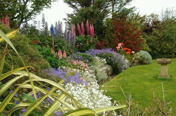 beautiful border envie d 39 un beau jardin pinterest jardins beaux jardins et fleurs. Black Bedroom Furniture Sets. Home Design Ideas