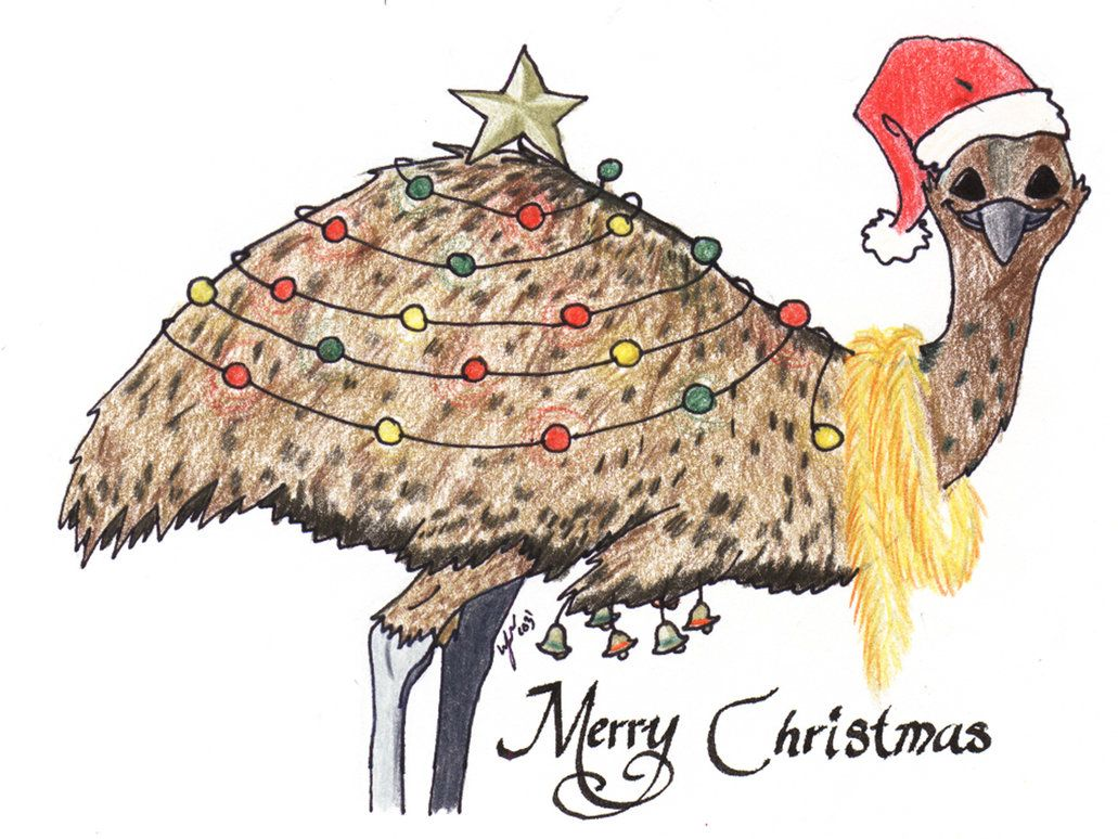 Aussie christmas card emu by heather briana illustrations aussie christmas card emu by heather briana m4hsunfo Choice Image