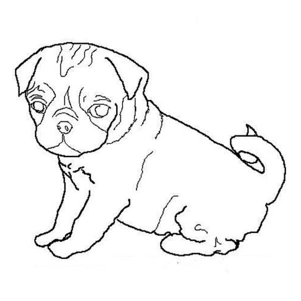 Free Coloring Pages Of Dog Outline Dog Outline Outline Drawings