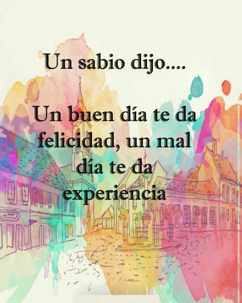 Un Buen Día Te Da Felicidad Un Mal Día Te Da Experiencia