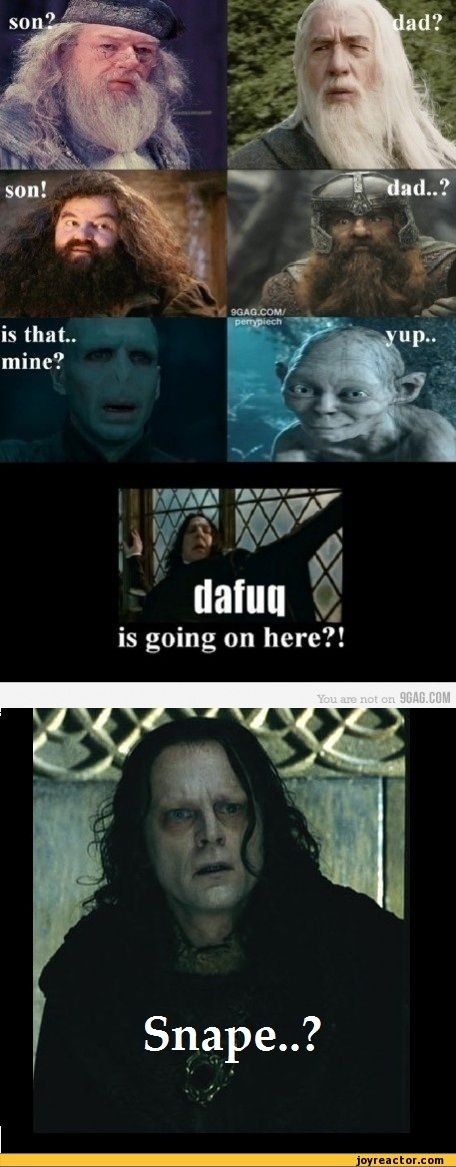 Hahaha! Lord of the Rings and Harry Potter