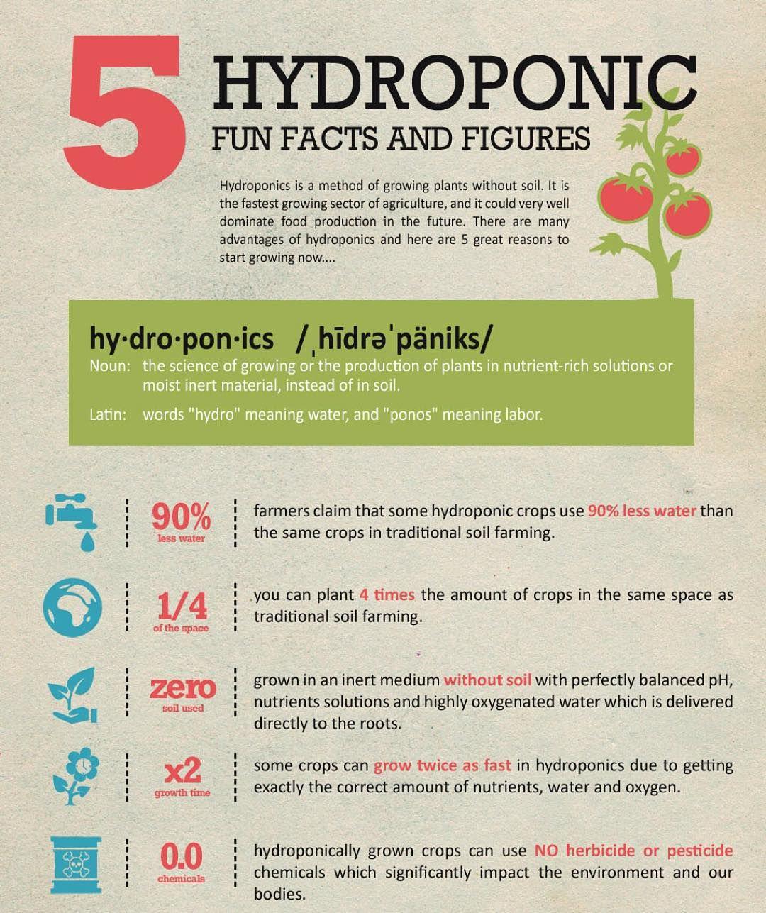 5 fun facts on hydroponic agriculture  nabuproduce  spinach  kale  arugula   microgreens  nongmo  organic  leafygreens  babygreens  nom   urbanagriculture ... 556d53e1c2fe