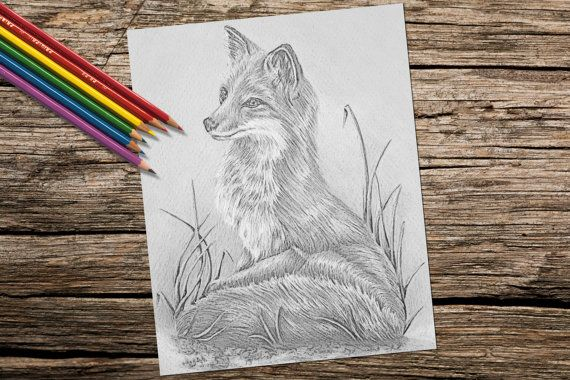 Adult Coloring Page Fox Grayscale Coloring Pages Instant