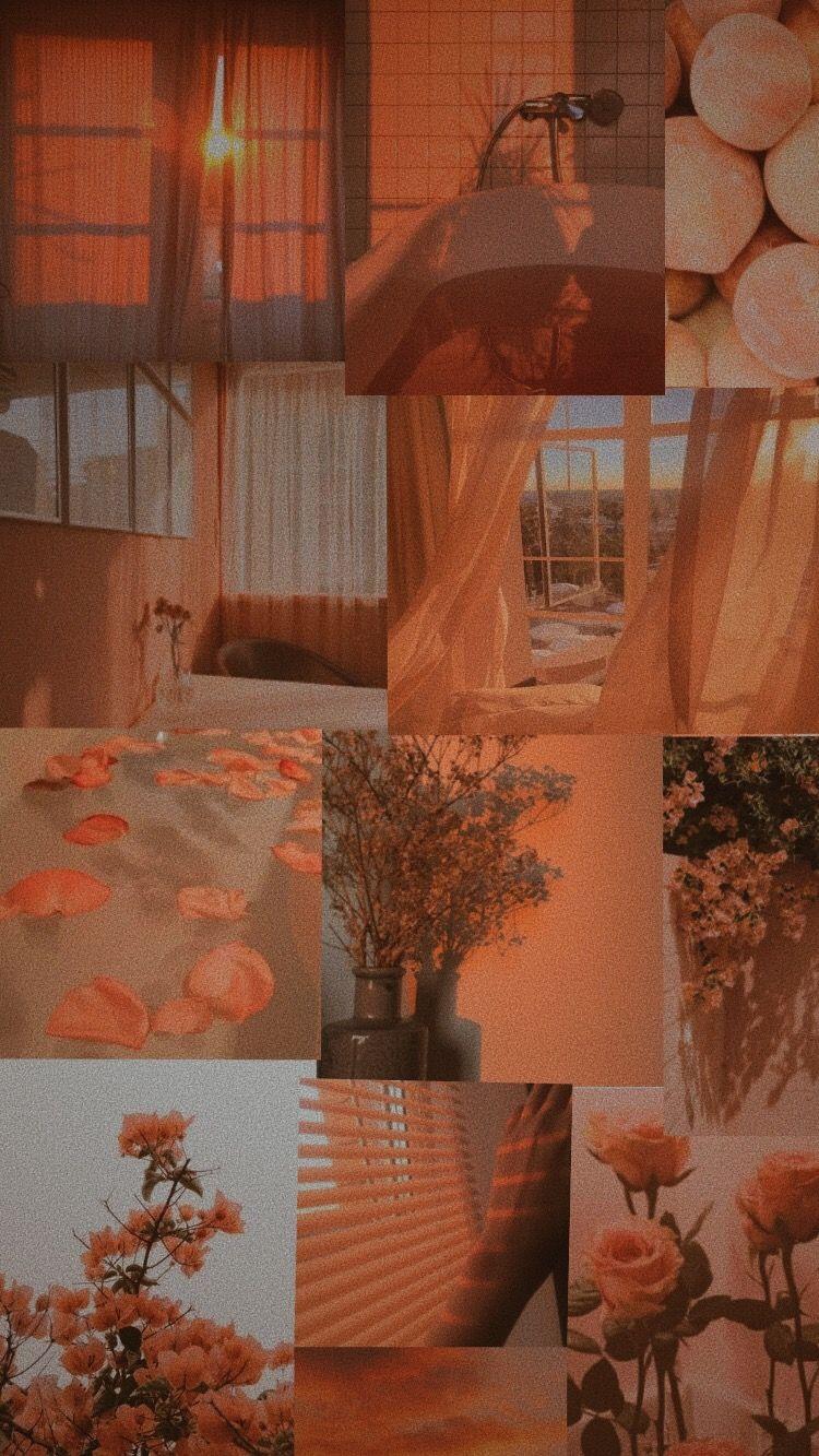 Peach wallpaper Aesthetic pastel wallpaper, Aesthetic