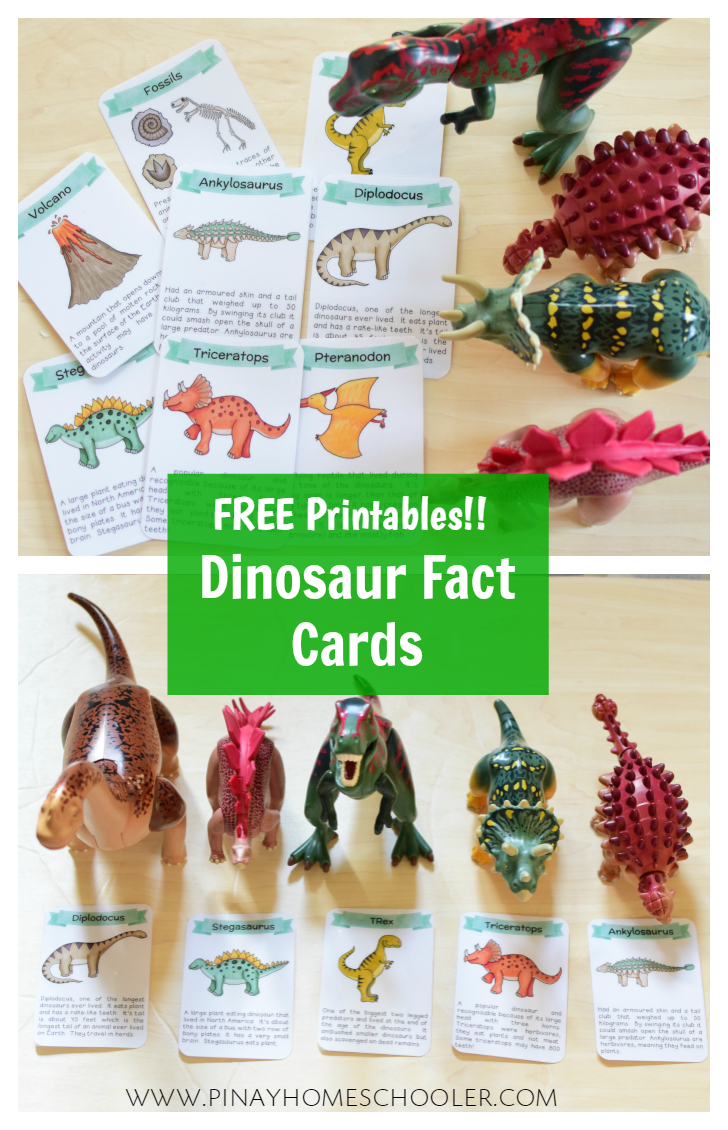 Play-based Dinosaur Activities for Preschoolers | Dinosaur facts ...