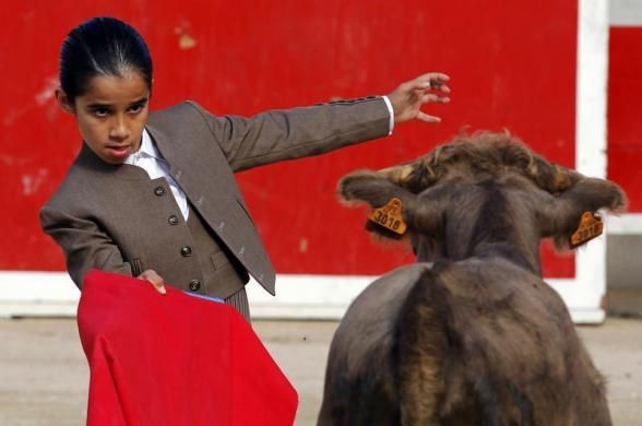 Nino, a ten-year-old toreador apprentice of the Nimes bullfighting school, nicknamed El Nino, performs a muleta pass during a beginner's bullfight (becerrada) at the bullring of Bouillargues, near Nimes, October 5, 2013.  REUTERS/Jean-Paul Pelissier