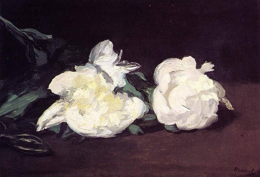 Branch of White Peonies and Secateurs by @artistmanet #realism