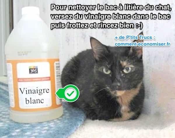 facile et rapide comment nettoyer et d sinfecter la liti re du chat avec du vinaigre blanc. Black Bedroom Furniture Sets. Home Design Ideas