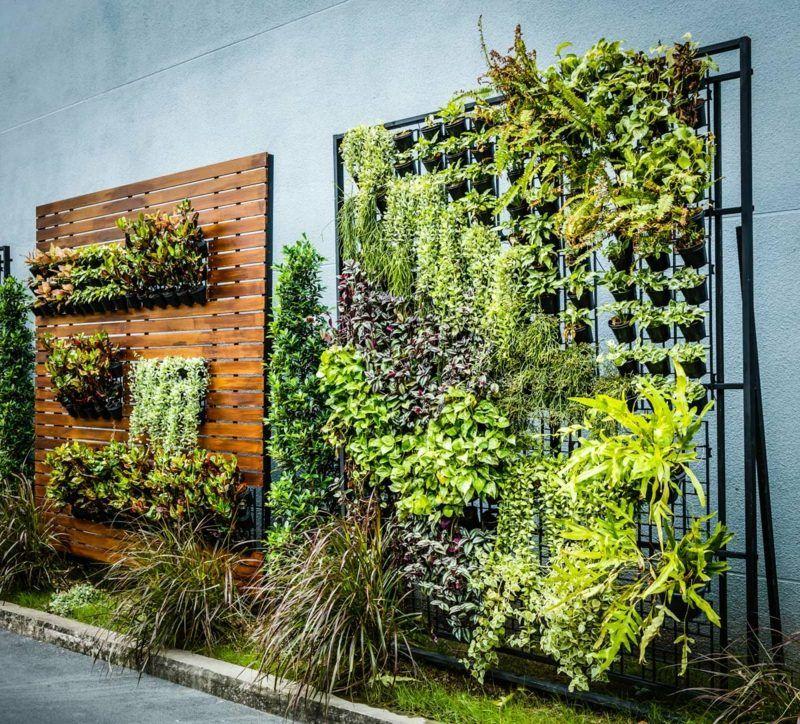 Ein Vertikaler Garten Selber Bauen Schritt Fur Schritt Anleitung Garten Haus Garten Wandverkleidung Zenideen Vertikaler Garten Vertikaler Garten Diy Gartengestaltung