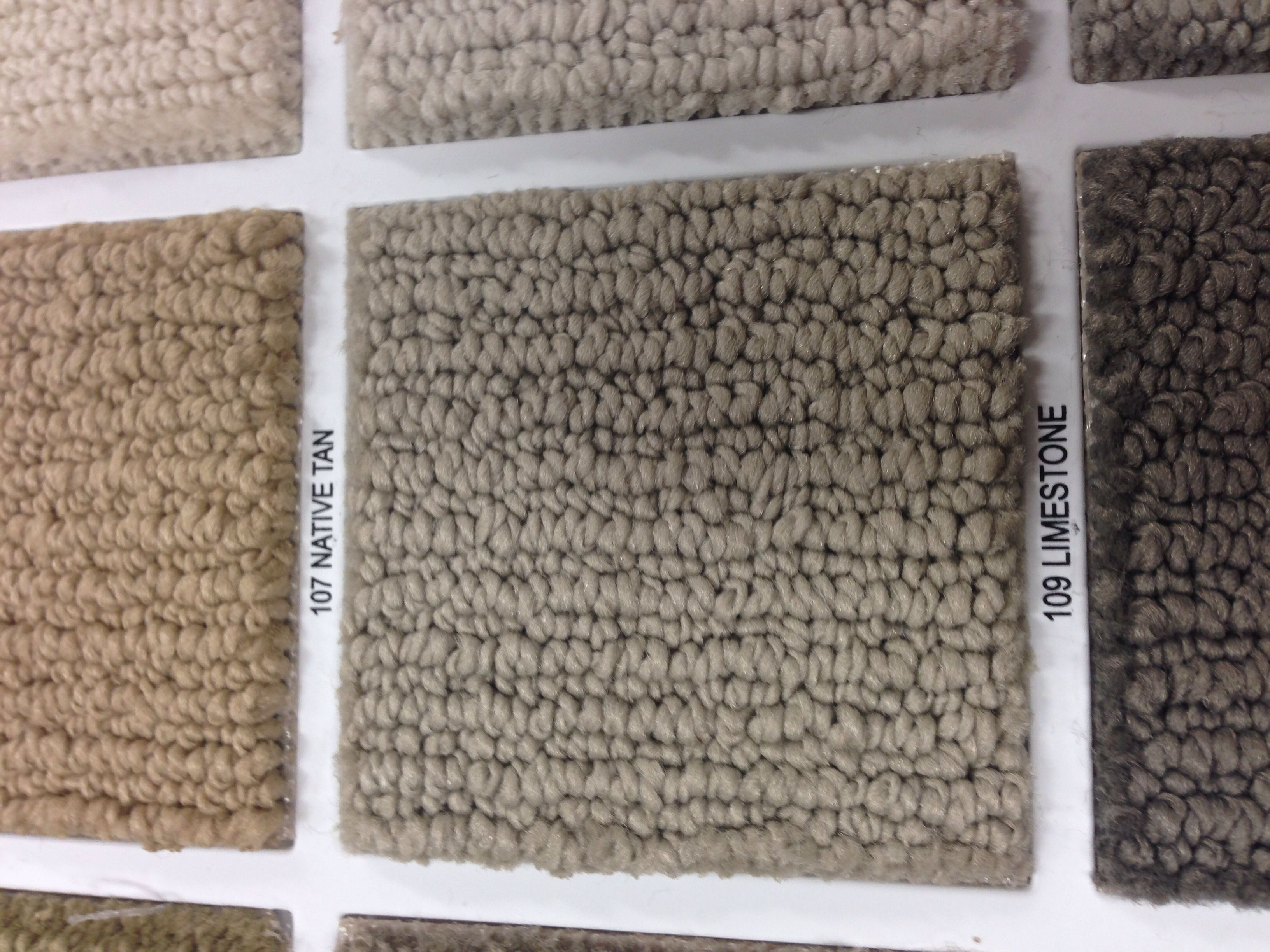 Shaw Carpet Color New House Home Decor Carpet