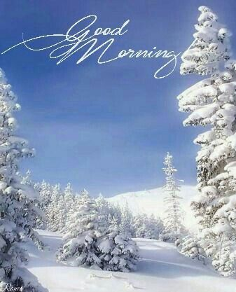 Good Morning My Love Hope You Rested Well And Had Sweet Dreams About Me Wishing Good Morning Winter Good Morning Picture Good Morning Beautiful Images