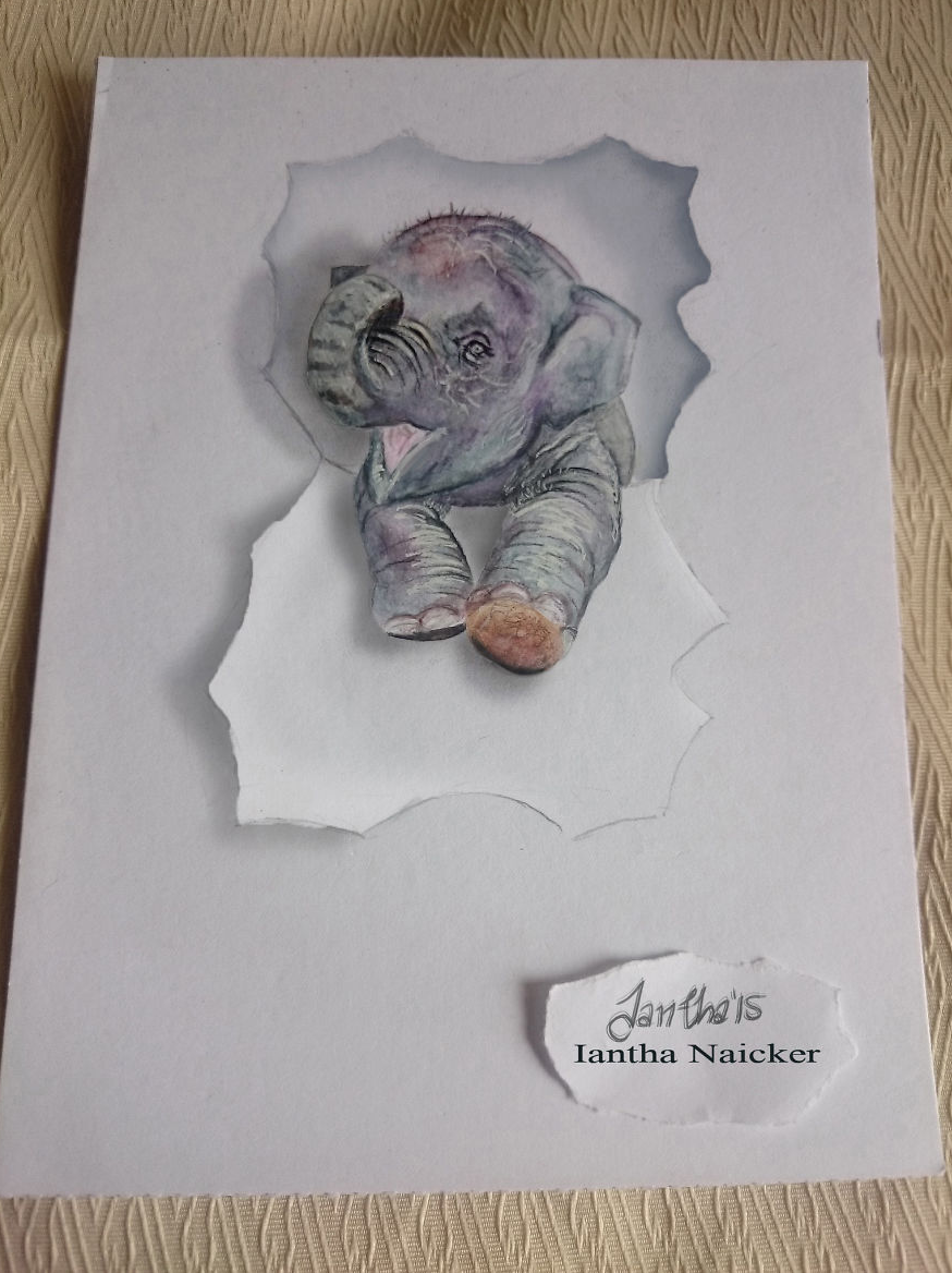 My Animal Drawings Try To Leap Off The Page Animal Drawings - Artist creates amazing 3d sketches that leap from the paper theyre drawn on