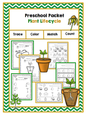 Preschool Packet Plant Lifecycle from Preschool Printables on TeachersNotebook.com -  (27 pages)  - Plant Lifecycle Packet  12 vocabulary cards 9 color & trace pages 2 color & match pages Circle & count Circle the smallest I spy What is different? Maze Plant life cycle order sheet 2 Scissor practice
