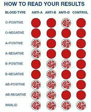 How To Read Your Result  Blood Type  Hematology