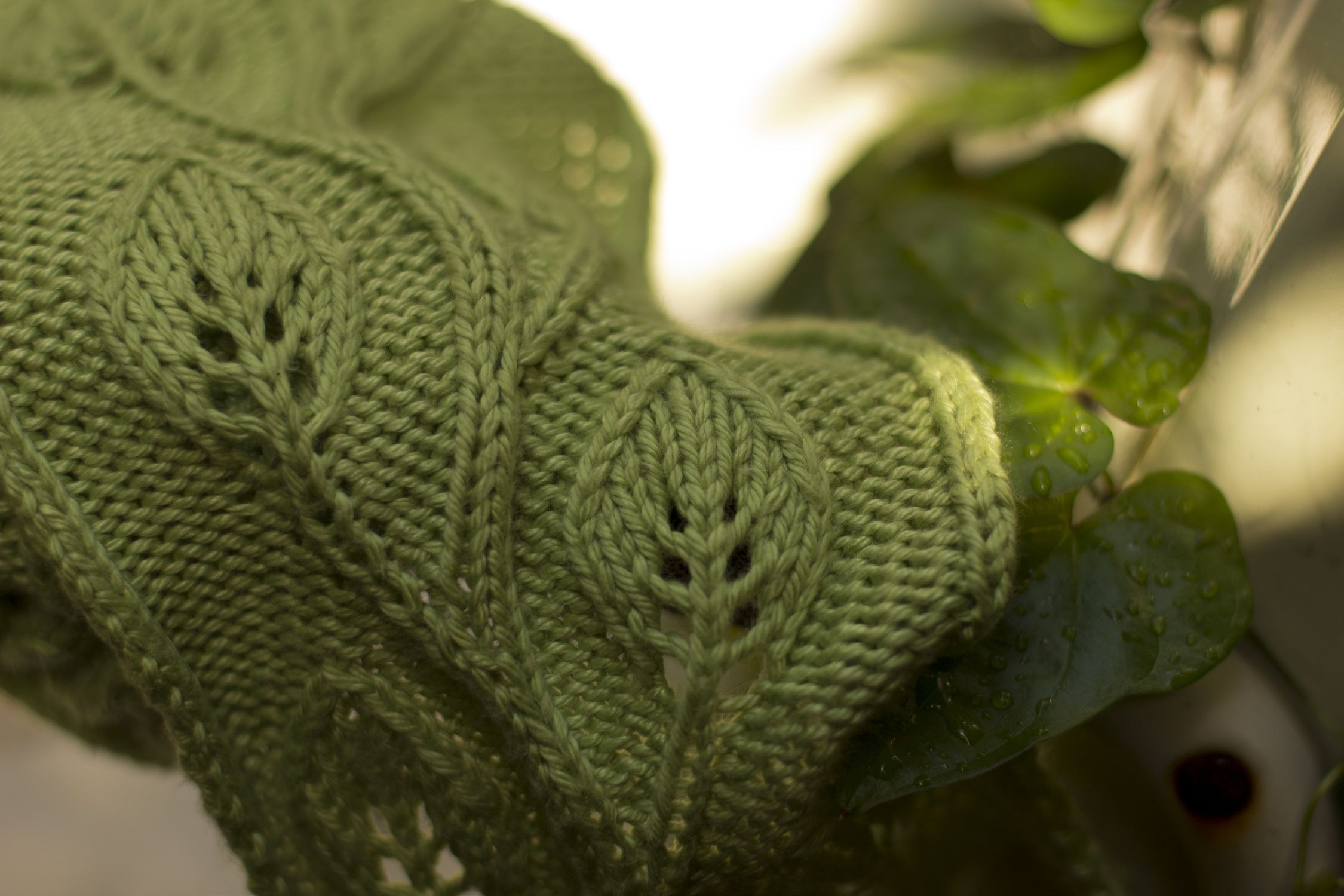 Daphne Scarf - Free Knitting Pattern by Saranac Hale Spencer | Free ...